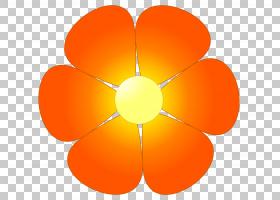 花卉背景自由,圆,字体,线路,橙色,花瓣,对称性,玫瑰,蓝绿色,颜色,