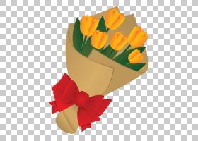 橙花,橙色,黄色,花瓣,叶,植物,假日,礼物,孩子,父亲节,花,网站,花图片