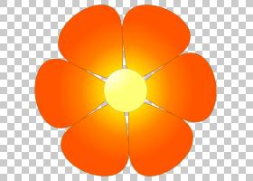 粉红色花卡通,圆,线路,花瓣,对称性,开花,粉红色的花,绘图,橙花,