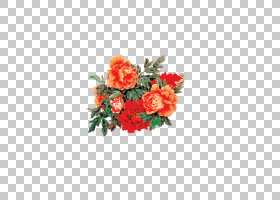 粉红色花卡通,花卉,花盆,植物群,粉红色家庭,花卉设计,大丽花,人
