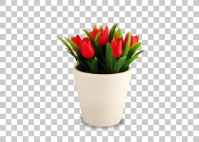 粉红色花卡通,花瓶,切花,植物,供应商,贸易,花,橙色,批发,紫色,颜