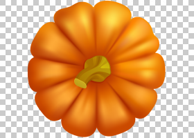桃花,南瓜属,壁球,桃子,蔬菜,花瓣,花,橙色,3D计算机图形学,南瓜,图片