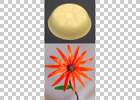 桃花,桃子,照明附件,花瓣,花,橙色,照明,图片