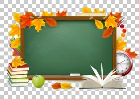 返回学校橙色背景,黄色,花,橙色,相框,回学校,教育,彩色铅笔,铅笔图片