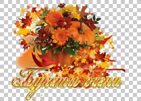 花卉剪贴画背景,感恩节,插花,橙色,广州,韩国插花,秋季,花瓶,中心