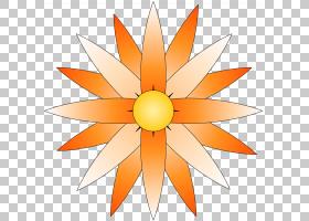 黑白花,线路,橙色,黄色,花瓣,对称性,花,植物,月,颜色,铅笔,画家,