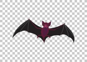 蝙蝠卡通,机翼,紫色,东半球果蝠,绘图,巨型金色飞狐,吸血鬼,飞来