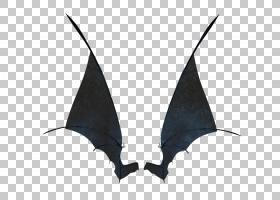 黑白相间,妖魔学,鬼魂,动画,光栅图形,机翼,恶魔,蝙蝠,