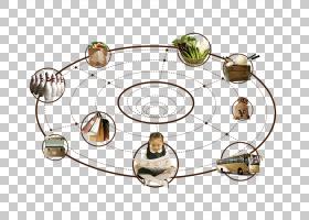 建筑卡通,圆,线路,表,餐具,金属,材质,软件,海报,建筑,不动产,广