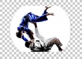 柔术表演艺术,活动,舞者,关节,嘻哈舞,表演艺术,空手道,形,自卫,