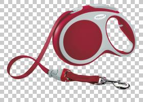 红色背景,红色,硬件,服装辅料,动物庇护所,塑料,销售线索,皮带,宠