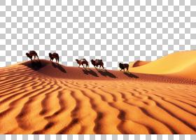 唱卡通,景观,沙漠,生态区,撒哈拉,ERG,沙子,歌唱的沙子,沙丘,材质