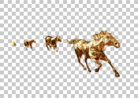 背景金色,鬃毛,牲畜,马匹,奔腾,黄金,种马,动物,福特野马,野马,