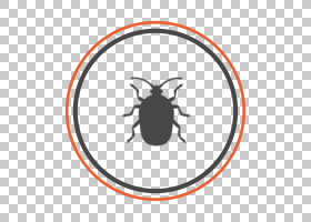 蚂蚁卡通,面积,圆,线路,佐治亚州,昆虫,木匠蚂蚁,品种繁多的地毯