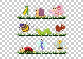 臭虫兔,线路,花卉设计,鲜花,植物,材料,草,花卉产业,面积,叶子,植