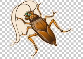 蟑螂卡通,传粉者,象虫,圣甲虫,甲虫,白蚁,可爱,东方蟑螂,褐蟑螂,