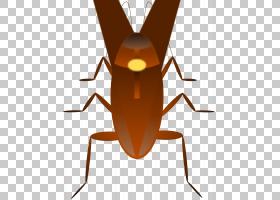 蟑螂卡通,机翼,甲虫,飞,奥吉和蟑螂,害虫,动画片,昆虫,蟑螂博士,