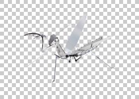 3D背景,机器,角度,技术,螺旋桨,机翼,昆虫,物种,硬度,动物,螳螂,