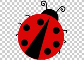 彩色背景,红色,甲虫,昆虫,颜色,打印,着色手册,模板,模板,瓢虫,