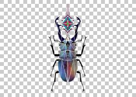 彩色背景,对称性,昆虫,颜色,金龟子,圣甲虫,艺术家,绘图,甲虫,