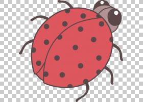 彩色背景,昆虫,颜色,可爱,瓢虫,绘图,甲虫,