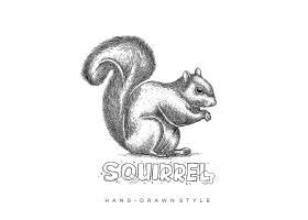 松鼠形象手繪單色線稿插畫設計