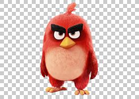 愤怒的小鸟,视频游戏软件,动作人偶,不会飞的鸟,长毛绒,鸟,毛绒玩图片