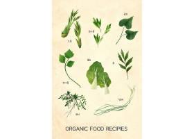绿色的青菜海报