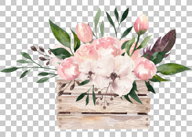 水彩花卉指示牌