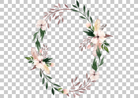 水彩花卉花环