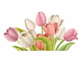高清卡通画花卉插画植物素材花卉元素