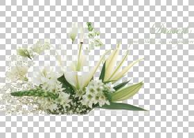 花卉背景,花卉产业,白色,插花,切花,植物区系,人造花,花,花瓶,铁