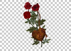 花卉背景,花卉产业,花束,花瓶,插花,切花,静物摄影,玫瑰花订单,花