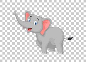 大象背景,非洲象,印度象,动物形象,猫,尾巴,鼻部,绘图,,动画片,大图片