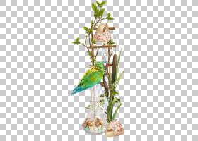 花卉背景,花卉产业,花束,表格,插花,切花,植物区系,花瓶,花盆,花,