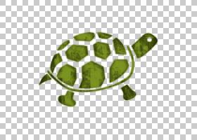 绿草背景,草,绿色,乌龟,爬行动物,动物,大象,爪子,盒龟,海龟,犀牛图片