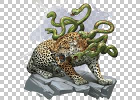 地下城,龙,野生动物,猎豹,章鱼,捷豹,野生动物,被遗忘的领域,Chul