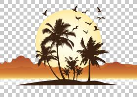 树木剪影,树,叶,种,骆驼,景观,日落,骆驼列车,绿洲,沙漠,剪影,双