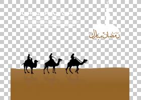 伊斯兰新年,景观,生态区,缰绳,种马,骆驼般的哺乳动物,文本,骆驼,