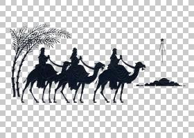 圣诞树剪影,贴纸,适应,景观,阿拉伯骆驼,骆驼,骆驼,圣诞树,耶稣诞