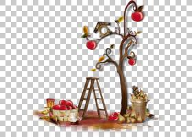画圣诞树,分支机构,水果,圣诞装饰品,食物,圣诞装饰品,静物摄影,