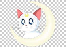 露娜水手月,圆,微笑,耳朵,尾巴,小猫,眼睛,胡须,中小型猫科动物,