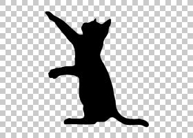 狗和猫,徽标,高兴的,黑白相间,尾巴,中小型猫科动物,黑色,模板,绘
