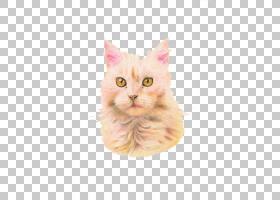 Hello Kitty Pink,鼻部,爪子,桃子,粉红色,猫,毛发,兔子,眼睛,耳