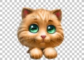 猫卡通,鼻子,鼻部,胡须,眼睛,毛发,早上,博客,猫,小猫,