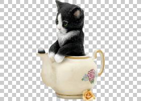 猫卡通,花盆,饮品,茶壶,杯子,餐具,猫,小猫咪,水壶,马克杯,有趣的