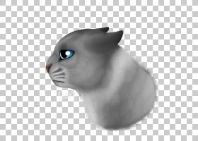 小猫卡通,鼻子,脸,眼睛,头,猫,鼻部,绘图,猫与互联网,脾气暴躁的