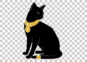 猫卡通,孟买,胡须,黑色,黄色,鼻部,猫,流行的猫名,古埃及诸神,女