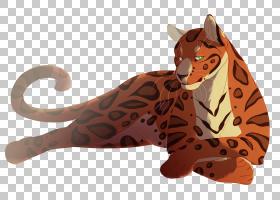 猫卡通,动物形象,眼睛,动物,银牌,丰田赛车的发展,红色,颜色,眼睛