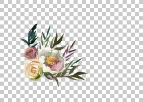 水彩花卉免扣元素素材